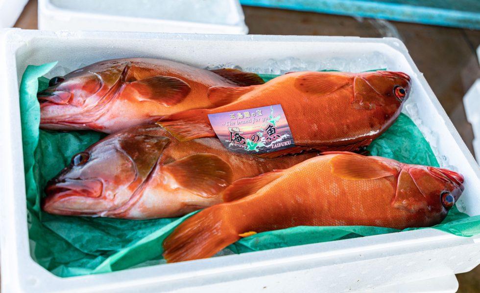 鯛福 俺の魚